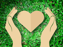 Hållande hjärtaförälskelse för hand bakgrunden för natursymbolgräs Royaltyfri Bild