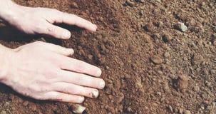 Hållande jord för bonde i händer Fält arkivfilmer