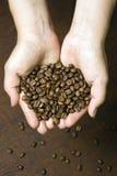 Hållande kaffebönor för ung flicka Royaltyfria Foton