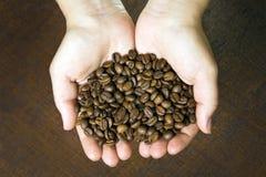 Hållande kaffebönor för ung flicka Royaltyfria Bilder