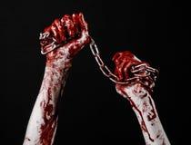 Hållande kedja för blodig hand, blodig kedja, halloween tema, svart bakgrund som isoleras Royaltyfri Foto
