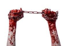 Hållande kedja för blodig hand, blodig kedja, halloween tema, vit bakgrund som isoleras Royaltyfria Bilder