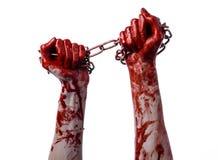 Hållande kedja för blodig hand, blodig kedja, halloween tema, vit bakgrund som isoleras Arkivfoton