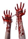 Hållande kedja för blodig hand, blodig kedja, halloween tema, vit bakgrund som isoleras Arkivbilder