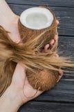 Hållande kokosnöt i händer Arkivfoto