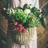 Hållande korg för kvinnlig bonde av nya trädgårds- grönsaker, fyrkantig skörd arkivfoto