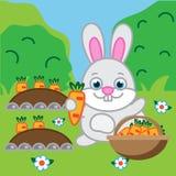 Hållande morot för kanin Hare kanin i trädgården vektor illustrationer