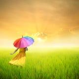 Hållande paraply för härlig kvinna i fält och solnedgång för grönt gräs Arkivbild