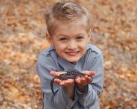 Hållande salamander för pojke royaltyfri foto