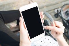Hållande smartphone för kvinna i bänkarna i parkera Kan användas för annons Royaltyfria Bilder