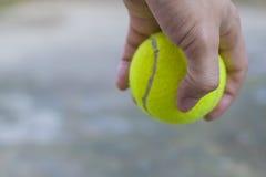 Hållande tennisboll för man Royaltyfri Foto