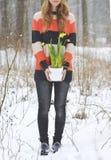 Hållande vit blomkruka för kvinna med den snöig skogen för påskliljavinter Arkivbilder