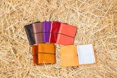 Hållare för läderaffärskort Royaltyfri Foto