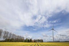 Hållbar energivärld arkivfoto