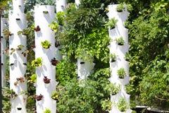 Hållbar uppehälle för trädgårds- torn Arkivbild