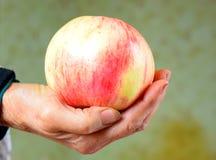 håller den away dagdoktorn för äpplet royaltyfria foton