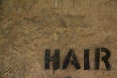 hår Fotografering för Bildbyråer