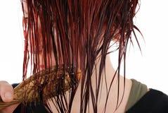 hår royaltyfri bild