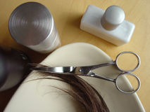 hår för 4 omsorg Royaltyfria Bilder