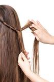 Hår för brunt för raksträcka för flätade trådar för frisör som långt isoleras på vit Fotografering för Bildbyråer