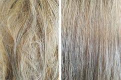 hår före och efter som jämnar royaltyfri bild