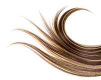 hår long Royaltyfri Foto