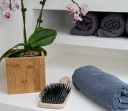 Hårborste och handduk arkivbilder