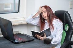 Hård funktionsduglig kvinna, små och medelstora företag royaltyfri bild