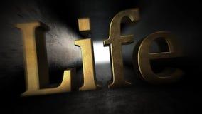 hård livstid Slåss allt mitt liv arkivfilmer