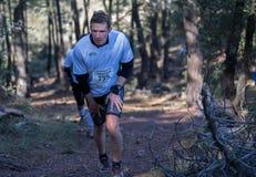 Hård maratonbergrace, gruppklättring Royaltyfri Fotografi
