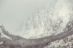 Hård vinter Fotografering för Bildbyråer