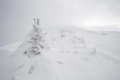 Hård vinter i bergen Arkivfoton