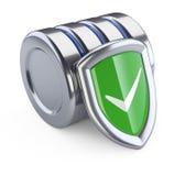 Hårddisksymbol med den gröna skyddsskölden Databassäkerhet c royaltyfri illustrationer