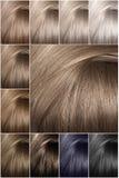 Hårfärgpalett med en lång räcka av prövkopior Prövkopior av kulöra hårfärger Skuggor av kalla färger arkivbild