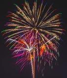 Håriga explosioner Royaltyfria Foton