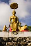 Hårkam för elefant- och apaerbjudandehonung till Buddha och Buddha med Royaltyfri Bild