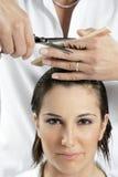 hårsalong Arkivfoto