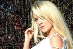 hårsolsken Fotografering för Bildbyråer