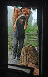 Hårt liv av himalayasna Arkivbilder