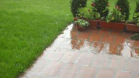 Hårt regna i en trädgård arkivfilmer