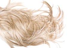 hårtextur Arkivbilder