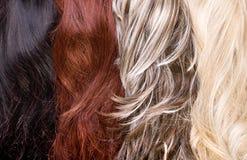 hårtextur Fotografering för Bildbyråer