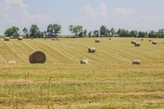 Hé champ dans le Midwest et les grandes cautions rondes Photo stock