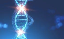 Hélice d'ADN avec des nombres binaire au-dessus de bleu illustration de vecteur