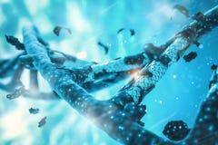 Hélice d'ADN, brin d'ADN, gène de génome éditant, décomposition d'hélice Photographie stock