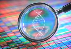 Hélice de amplificación de la DNA Fotografía de archivo libre de regalías