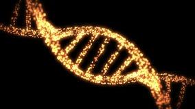 Hélice de la DNA que aparece y de desaparición stock de ilustración