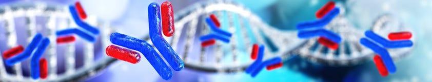 Hélice del anticuerpo y de la DNA, inmunoglobulinas Foto de archivo libre de regalías