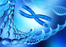 Hélice do ADN chromosome ilustração stock