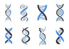 A hélice do ADN modela a ilustração colorida do vetor Fotos de Stock Royalty Free